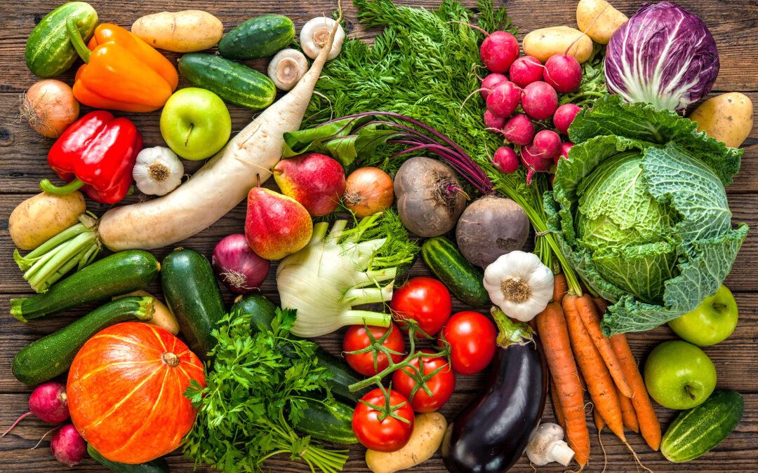 Ernährungstherapie – gesund Abnehmen