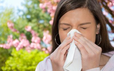 Vortrag: Allergien