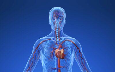 Osteopathie bei Bluthochdruck